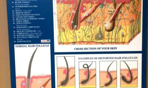 Clinic Portfolio 4
